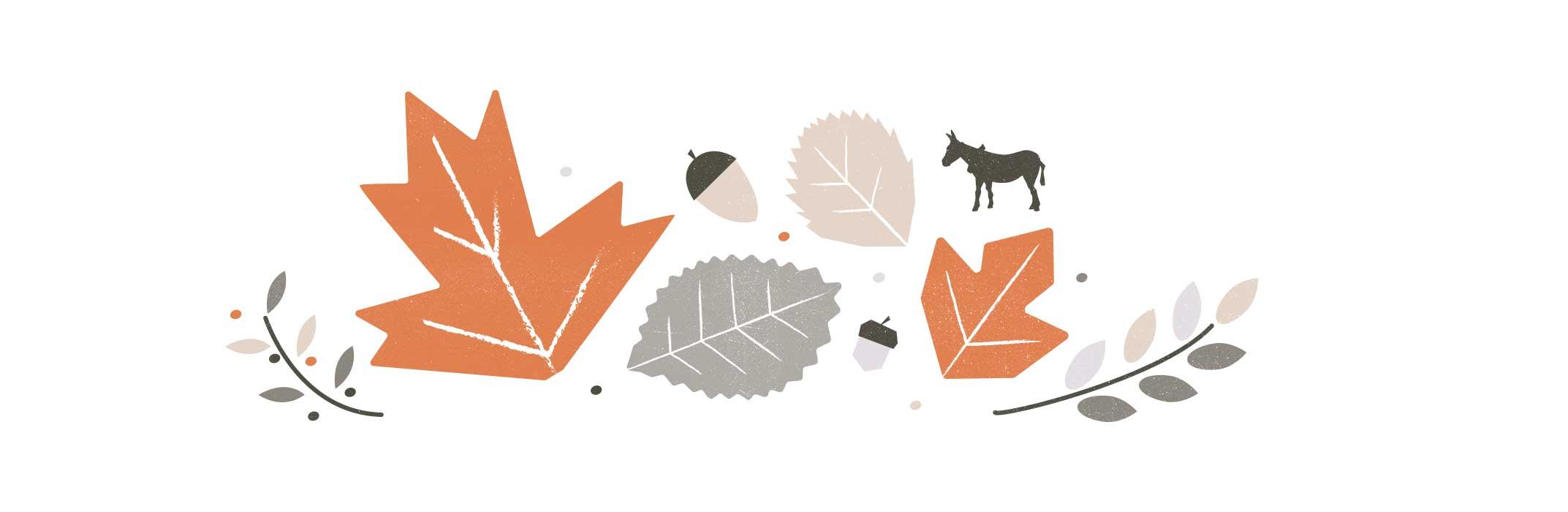 Thanksgiving from Entermotion, Wichita's website design studio